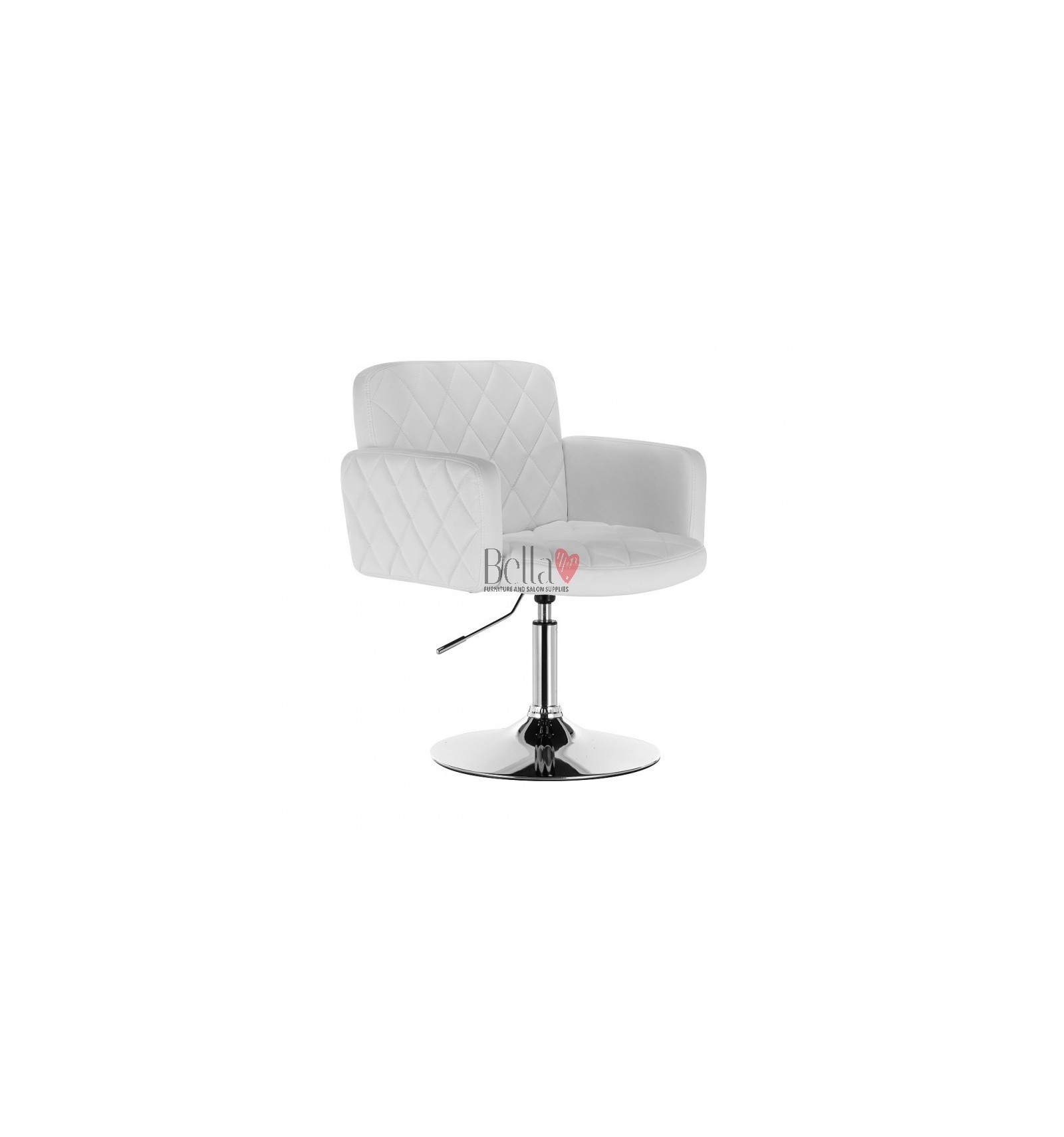 Best Selection Of Stylish Chairs For Beauty Salons Hc8020